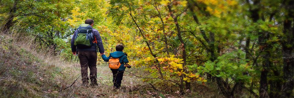 Explore Rondeau's unique habitats by taking stroll down one of our trails.