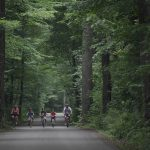 Biking down Rondeau Road (Ontario Parks)