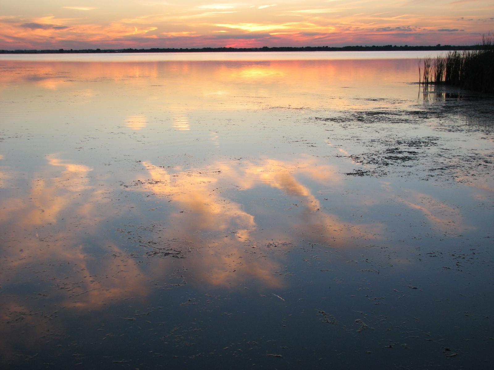 sunset marsh  -Ric McArthur